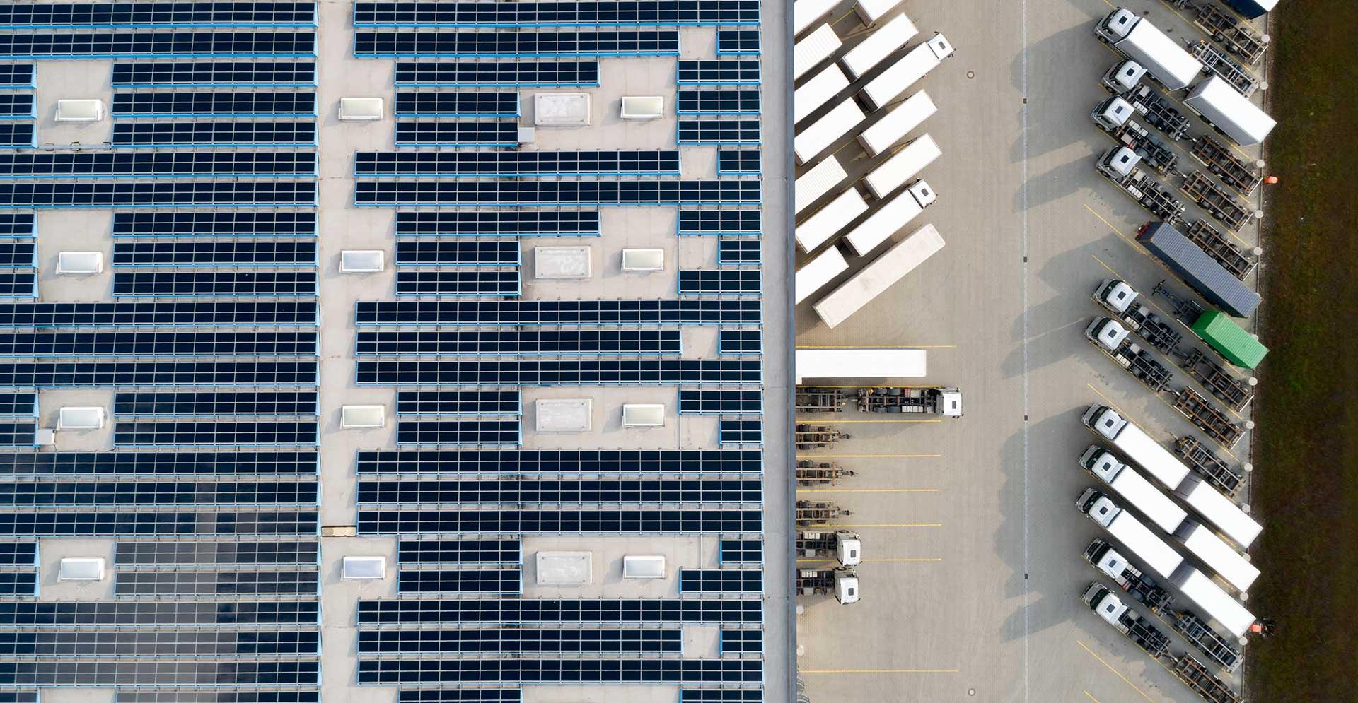 Extenzivní zelené střechy na průmyslových budovách