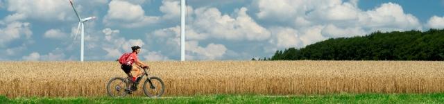 Arbeidsmarkt en netcongestie grootste hindernissen energietransitie