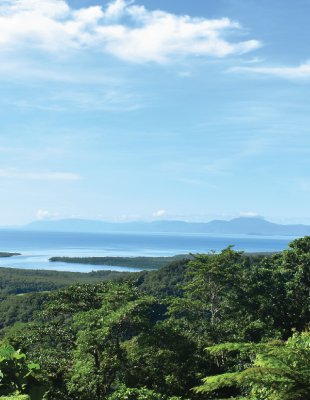 Arcadis to provide engineering services on the Daintree Renewable Microgrid Project